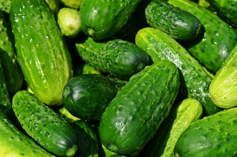Cucumber benefits: for Acne, Healthy hearth and more